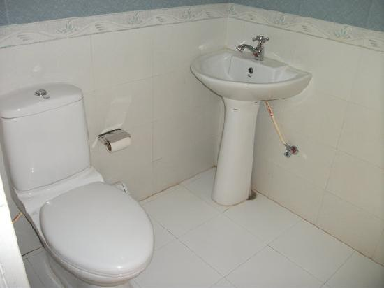 Hotel The Sajjan Villa: and the toilet