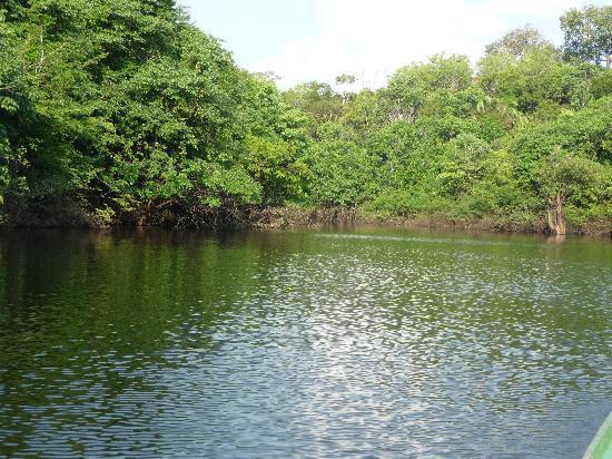 Autazes, AM: River trip