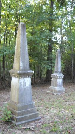 Cedar Grove Plantation : History Everywhere