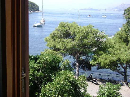 Villa Andro: The view from the window