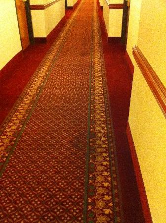 Wingate by Wyndham Montgomery: Stained carpet everywhere