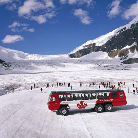 Tour Columbia Icefields