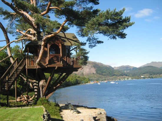 Loch Goil, UK: The Lodge - Treehouse