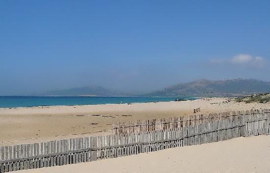Apart Hotel Koala Tarifa : Another view of Tarifa's stunning beach