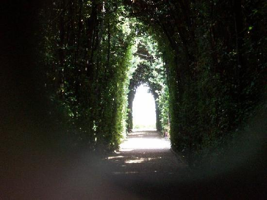 Access Italy Tours: a secret garden