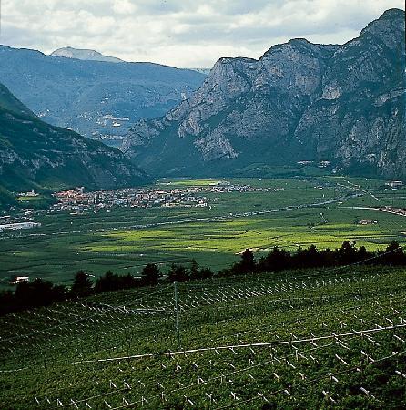 Andalo, İtalya: Piana Rotaliana