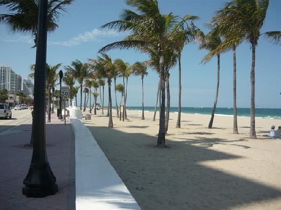 ฟอร์ตลอเดอร์เดล, ฟลอริด้า: Il lungomare di Fort Lauderdale