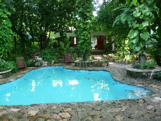 Casa Quetzal: The pool in the middle of a tropical garden