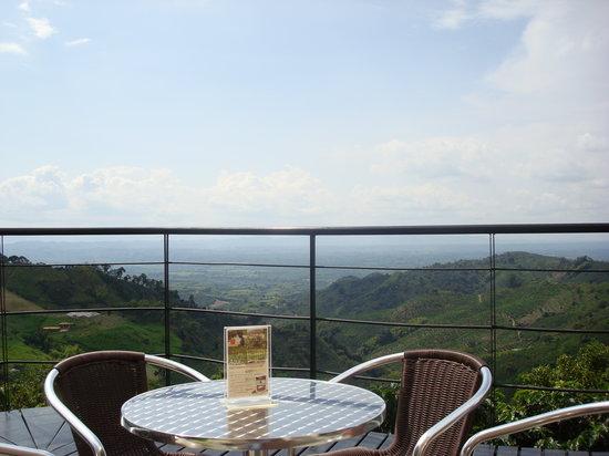 Cafe San Alberto: Una vista innovidable