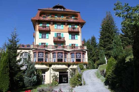Hotel Belvedere Wengen