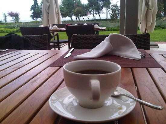 Novotel Hotels: Coffee overlooking the Black Sea. Nice.