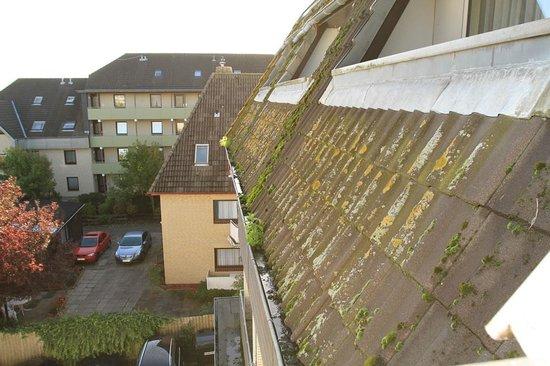 Büsum, Alemania:                   Das Dach ist bewachsen und die Regenrinne verstopft.