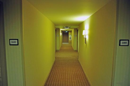 Sheraton Seattle Hotel: Hotelflur / Hallway
