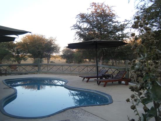 Photo of Deception Valley Lodge Central Kalahari Game Reserve