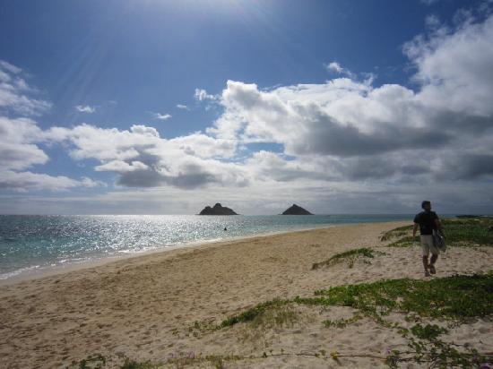 Kailua, HI: ビーチ