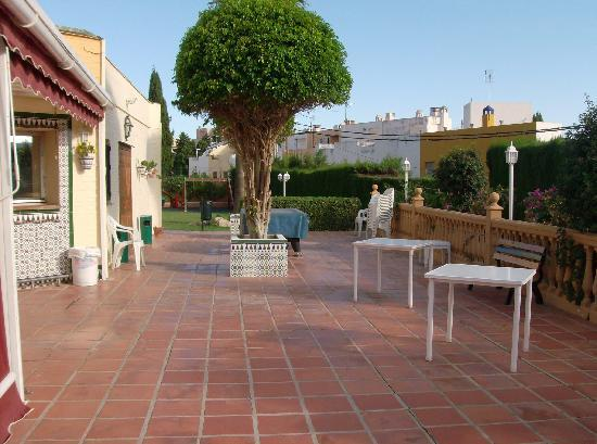 Club Playa Flores: gardens sun beds