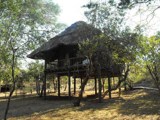 Zululand Tree Lodge: The huts - beautiful