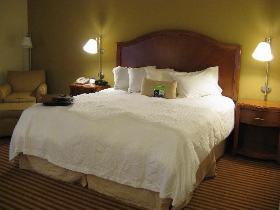 Hampton Inn Roanoke / Hollins / I-81: King Bed