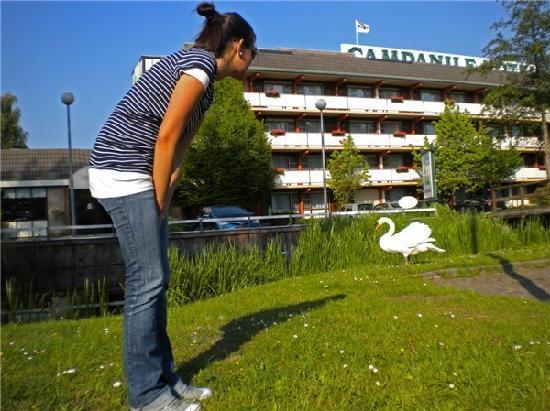 Campanile Hotel Gouda: mascotas del hotel