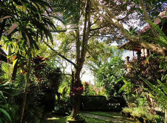 Puri Saraswati Bungalows: le parc