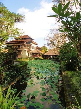 Puri Saraswati Bungalows: l'hotel est à droite