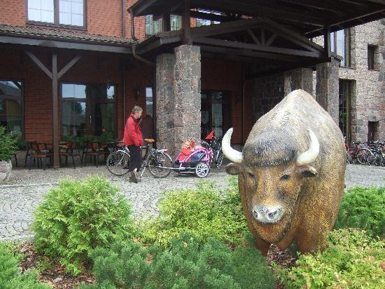 Hotel Zubrowka: outside hotel