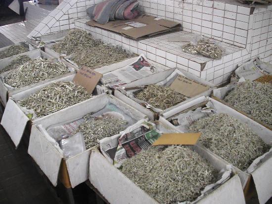 Kuala Terengganu, Malaysia: Fischmarkt