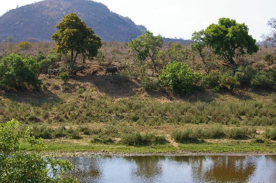 Khandizwe River Lodge: Blick von der Terasse