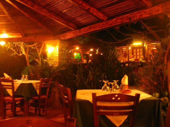 Kostas Brother's: A view to the restaurant from the garden