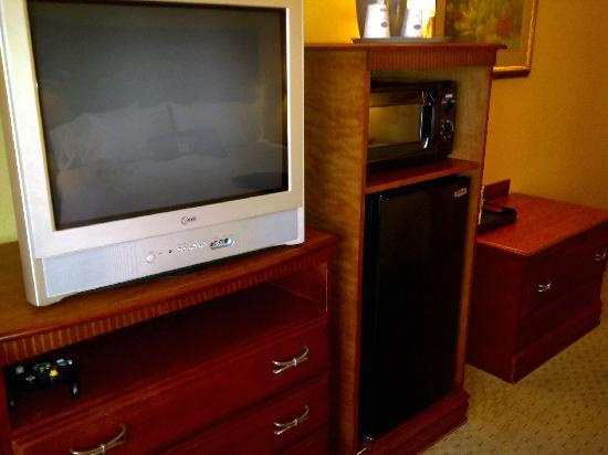 Hampton Inn & Suites Los Angeles Burbank Airport : Guest room