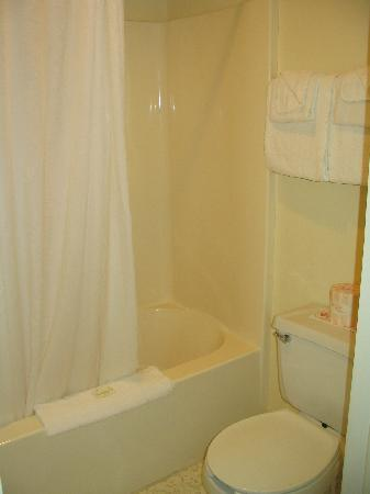 Waterfront Inn - Mackinaw City: bathroom