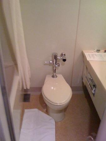 Camelot Hotel: The toilet and bath area, not the best picture but it does have bathtub