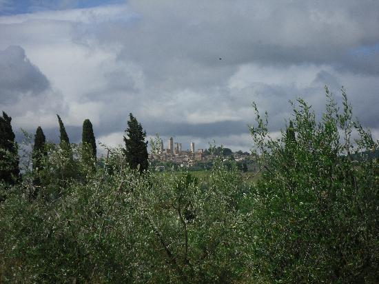 Agriturismo Il Vecchio Maneggio: View of San Gimignano