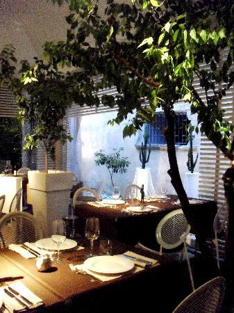 Corteinfiore, Trani - Restaurant Reviews, Phone Number & Photos ...