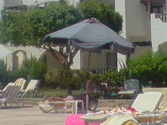 Poinciana Sharm Resort & Apartments: Nice Parasol NOT