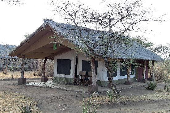 Serengeti Tented Camp - Ikoma Bush Camp: Our tent
