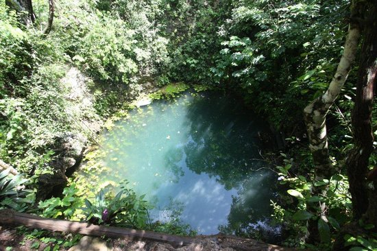Hummer Jungle Tours: Cenote