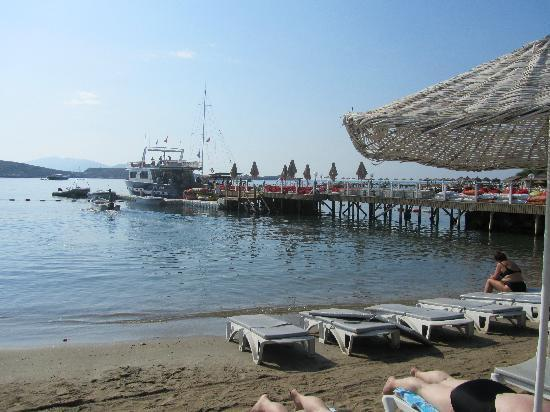 Gumbet Beach Resort: The Beach