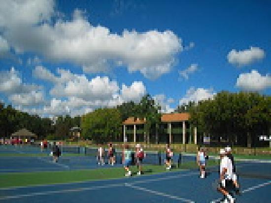 John Newcombe's Tennis Ranch: Courts
