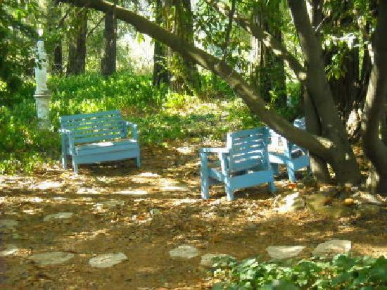 GlenMorey Country House: The shady, wooded property offers cozy spots to relax.