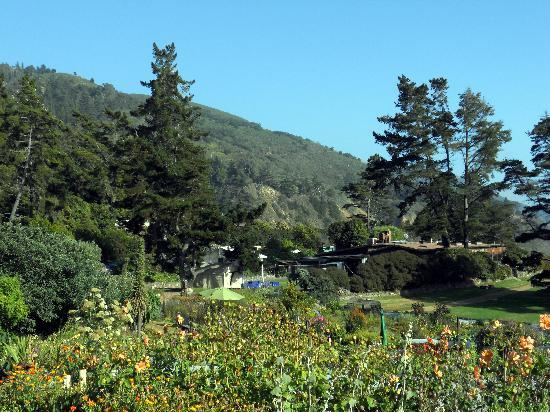 The Esalen Institute: View from the garden