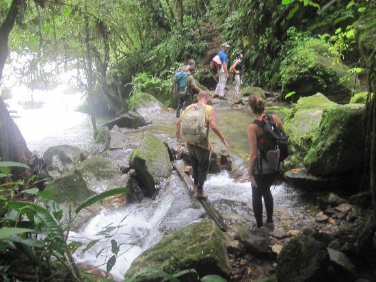 Ciudad Perdida: A river crossing.