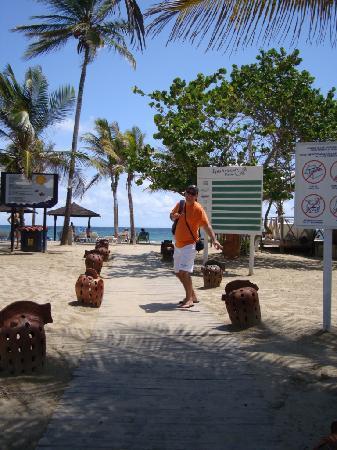 Laguna Mar: Camino de entrada a la playa del hotel