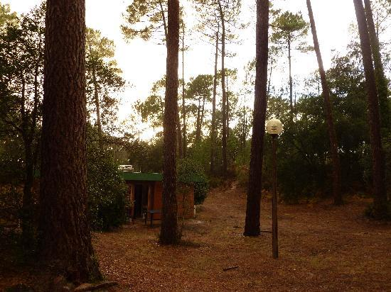 Residence-Club Odalys Les Villages sous les Pins: Bungalow