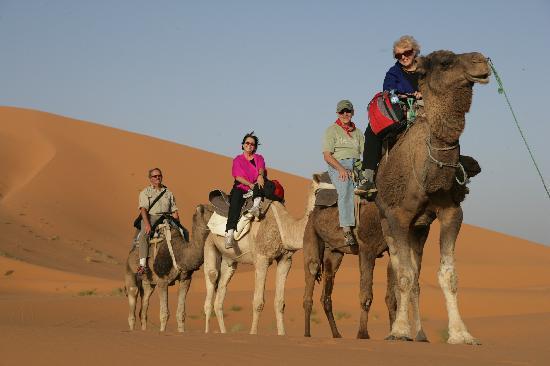 Riad Nezha: Camel tour
