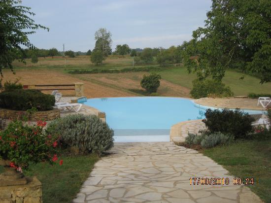 Hotel de la Ferme Lamy : Pool