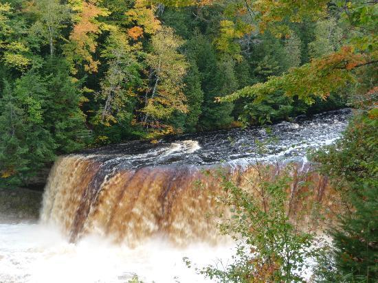 Tahquamenon Falls State Park : Tahquamenom Falls