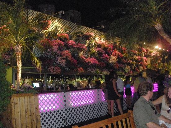 230 Fifth: terraza