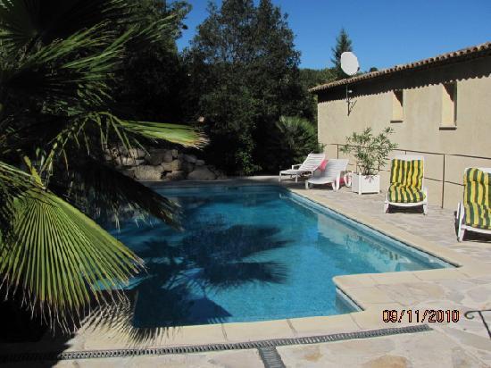 Le Mas de Frayere: photos de la piscine