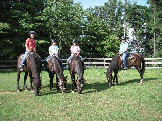 Arrowmont Stables: Bring the Family